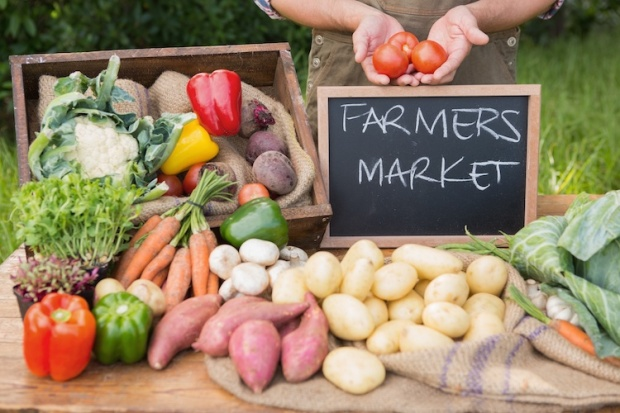 2017-farmers-market-guide